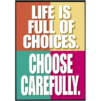 choices of life essay